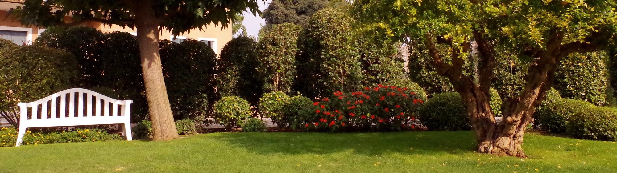 Venice Secret Garden - Brunella in Venice