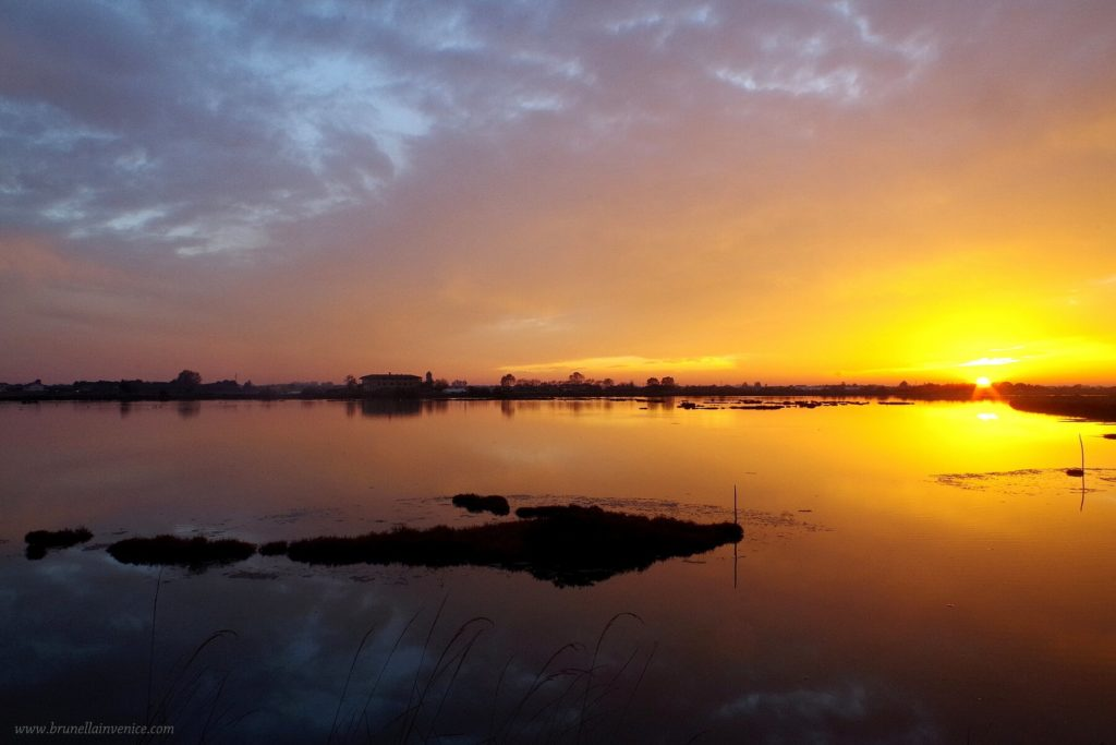 tramonti-cavallino-treporti-12