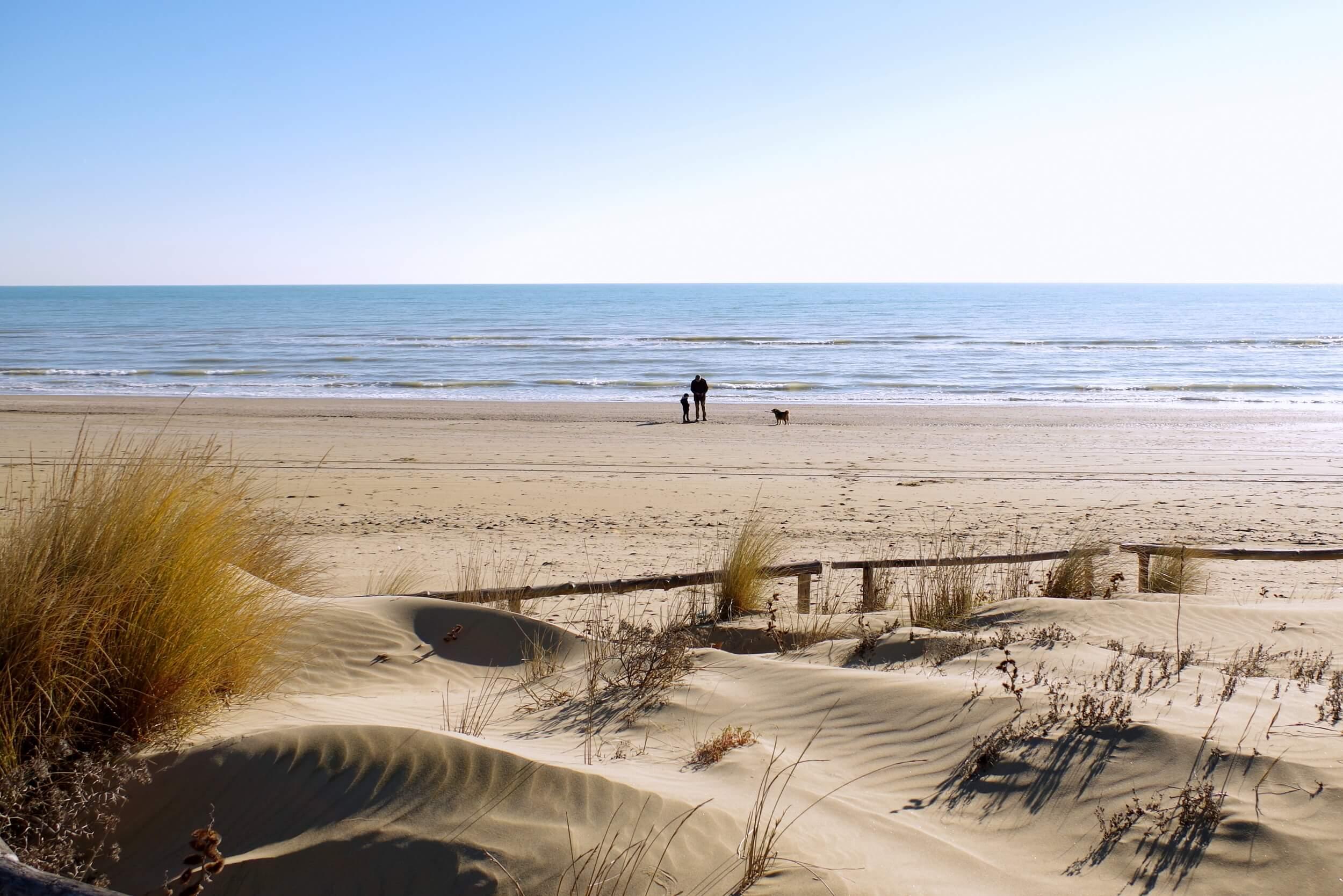 Matrimonio Spiaggia Inverno : Spiaggia d inverno passeggiata domenicale con brunella